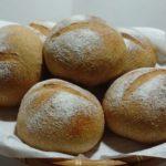 全粒粉5割プチパン小麦本来のおいしさ|一次発酵までホームベーカリー